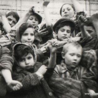 Enfant à Auschwitz La photo a été prise à Auschwitz I après la libération. Auteur: inconnu